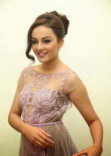 Seerat Kapoor Stills at Tiger Movie Audio Launch 9.jpg