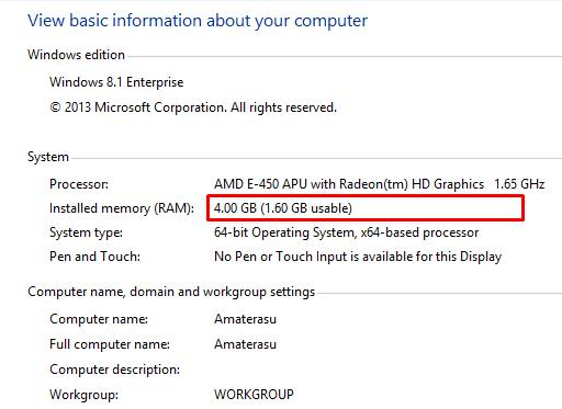 RAM 3 GB (Usable 1.6 GB)