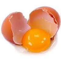 Telur Makanan Pembakar Lemak Perut