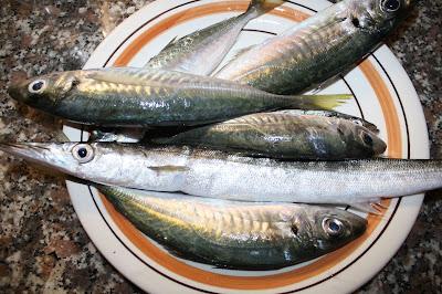 ricette pesci poveri