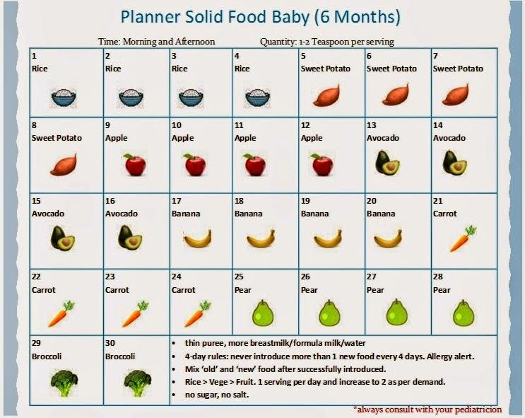 Makanan pertama bayi 6 bulan