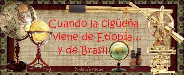 Cuando la cigüeña viene de Etiopía y de Brasil