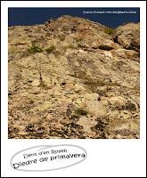 escalada-vall-de-nuria