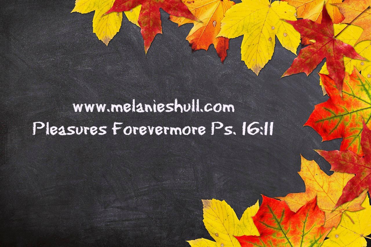www.MelanieShull.com