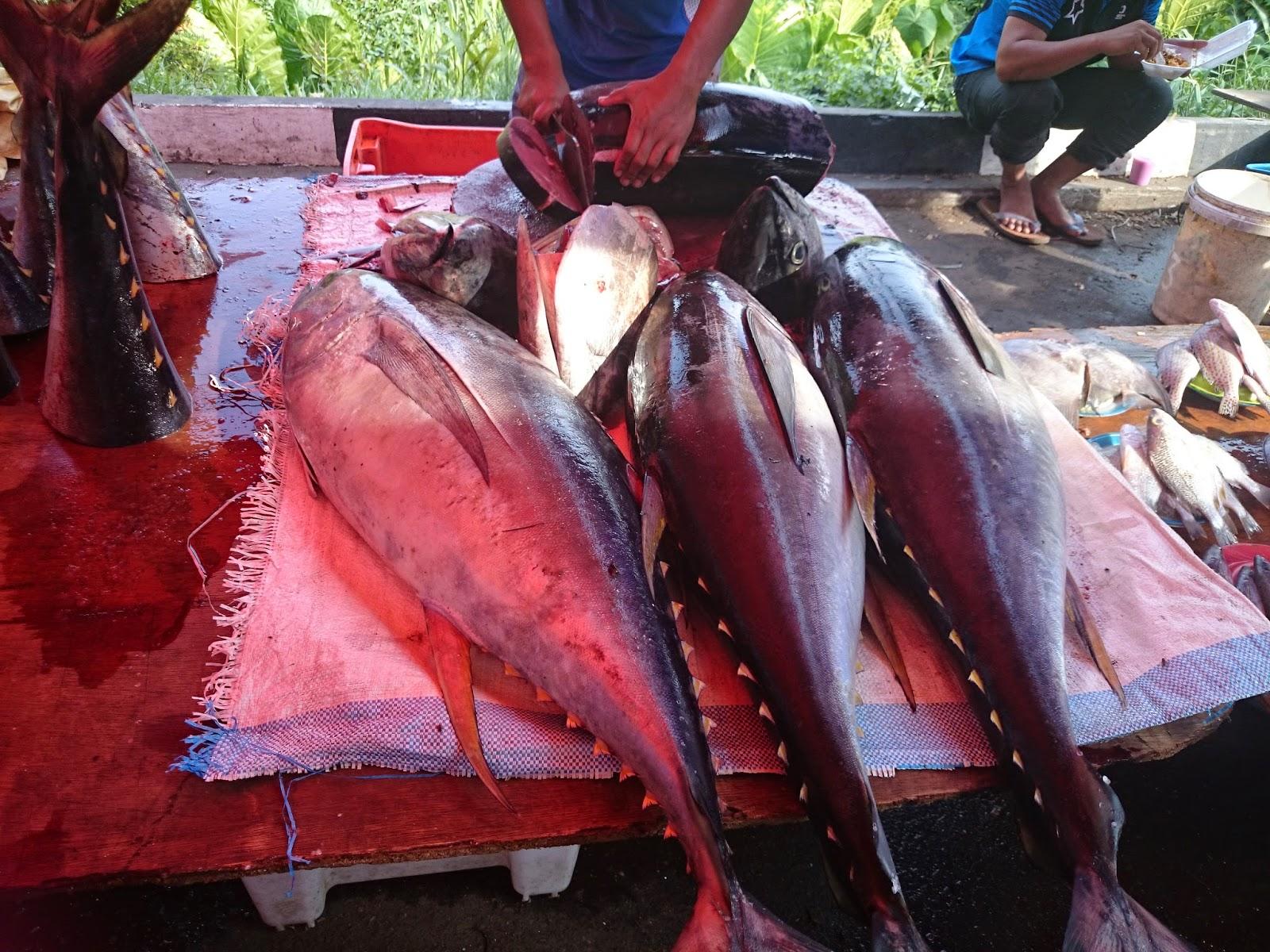 Gambar-gambar di sekitar Tamu Tuaran, Sabah