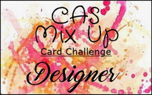 CAS Mix Up Challenge