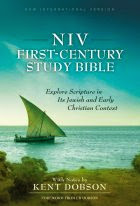 """NIV First Century Study Bible"""