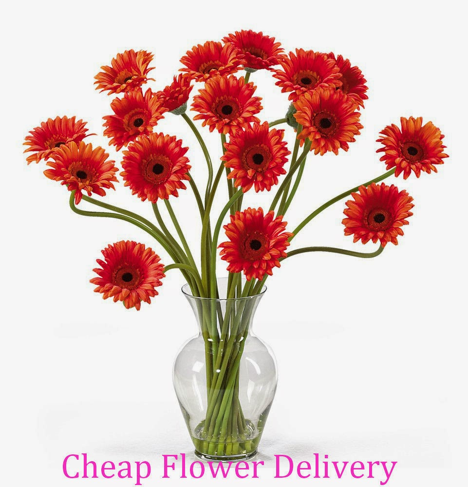 Cheap Flowers Delivered