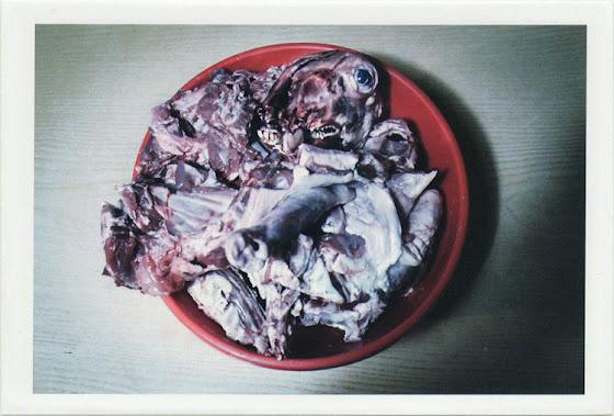 dirty photos - fumus - a photo of slaughtered lamb