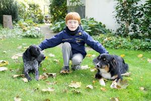Hundeinfoportal, sehr empfehlenswert