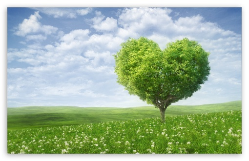 Wall Hit: Love Tree Wallpapers