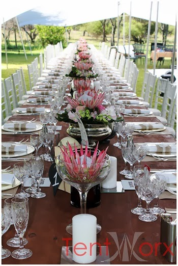 With wood décor and protea flowers we created a once in a life time event for all the guests whom have never experienced the magic of Africa. & Tentworx Weddings!: White stretch tent wedding : True South ...