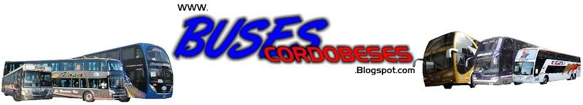 ¡¡¡Colectivos Cordobéses!!!