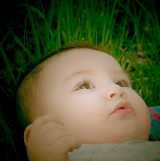 cute and beautiful baby in grass