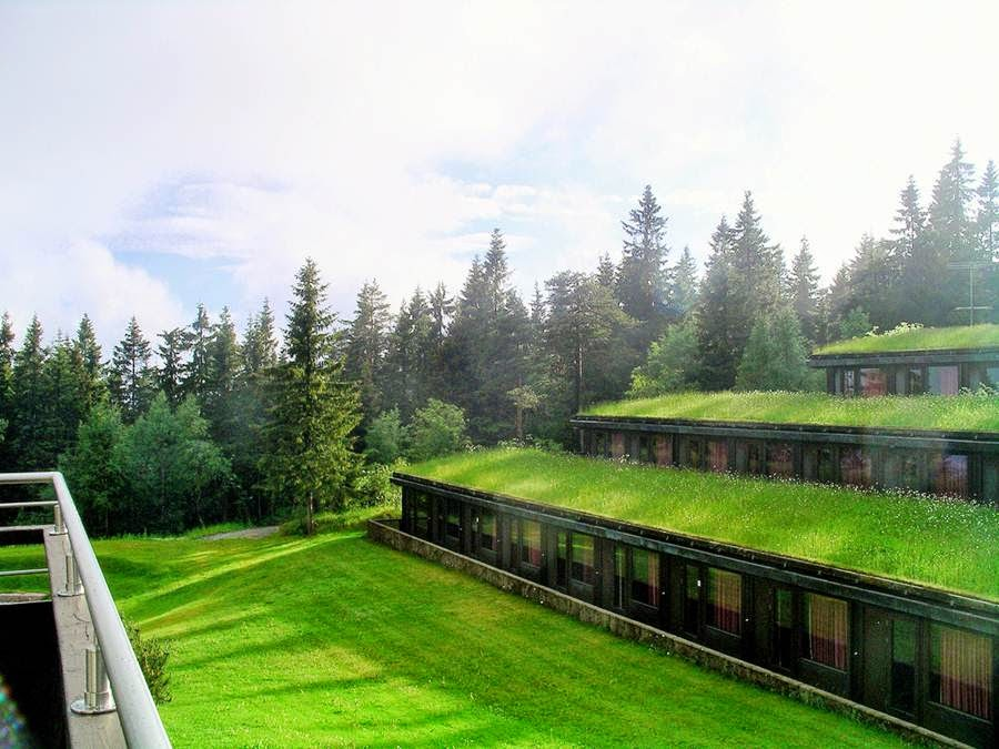 Mail2day Go Green Traditional Grass Roofs Of Norway 21