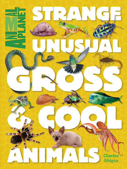 Strange, Unusual, Gross, & Cool Animals