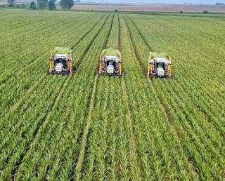 Tuyển 8 nữ làm nông nghiệp tại Nhật Bản