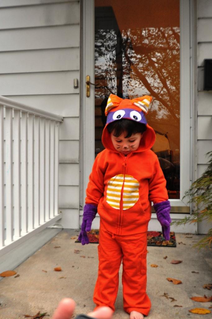 pin it - Swiper Halloween Costume