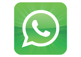 download Logo Whatsapp Vector
