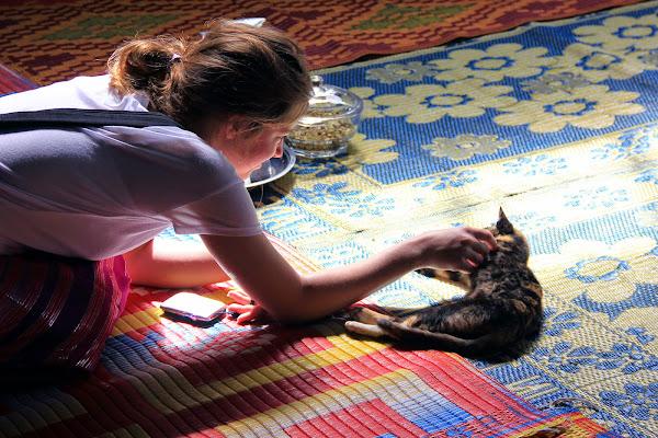 Monasterio de los gatos saltarines - Lago Inle