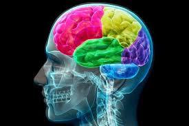 Cara Mempertajam Otak Anda Dengan Mudah