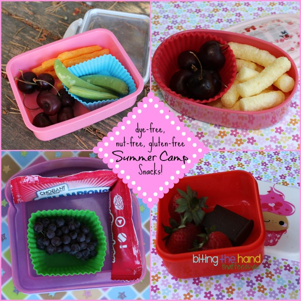 dye-free, gluten-free, nut-free Summer Camp Snacks!