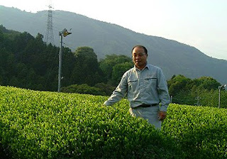 Tea Master Sugimoto in front of some tea fields in Shizuoka where our world famous Japanese green tea is produced