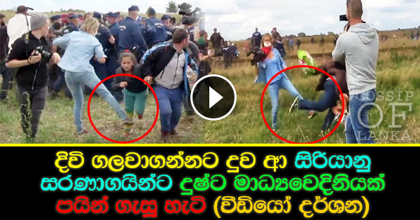 Hungarian Female Journalist Caught On Camera Tripping And Kicking Refugees (Watch video)