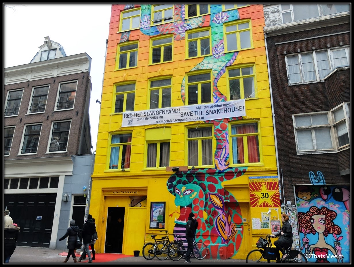 street art Snake building spuistraat yellow immeuble serpent jaune snakehouse