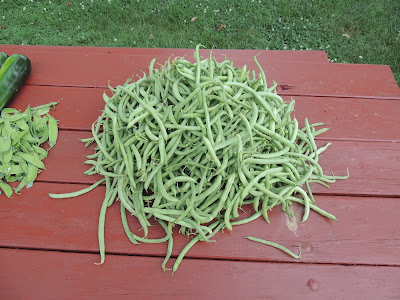 Mound of Green Beans