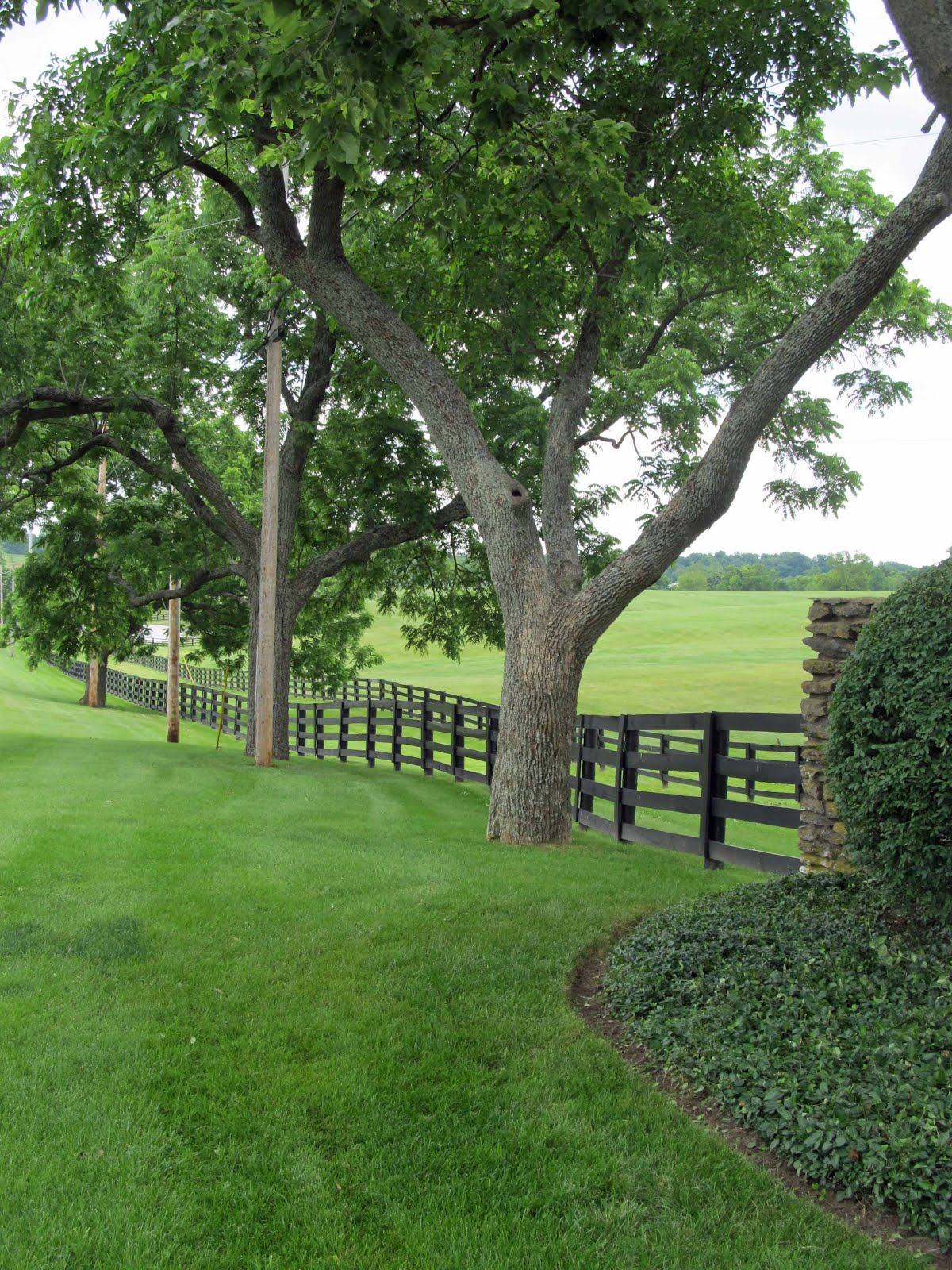 Summit Musings Friday Fences More From A Kentucky Horse