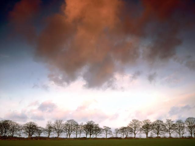 Auburn Sky nature wallpaper