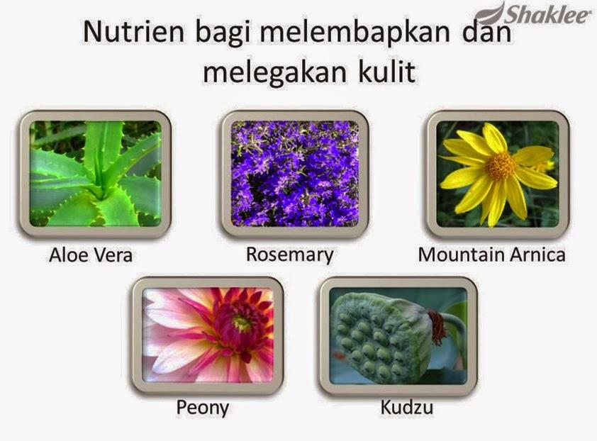 Nutrien bagi melembapkan dan melegakan kulit - Ramuan NutriWhite Shaklee