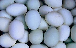 Resep Omelet Telur Sayur Lezat Dan Enak
