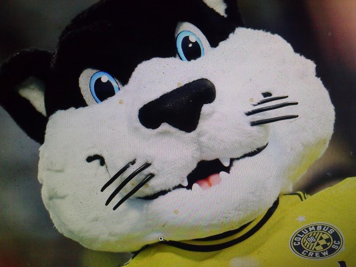 ...dear KittyKat....