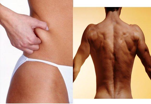 como bajar grasa abdominal baja