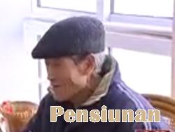 pekerjaan masa pensiun