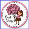 Premio bloguero