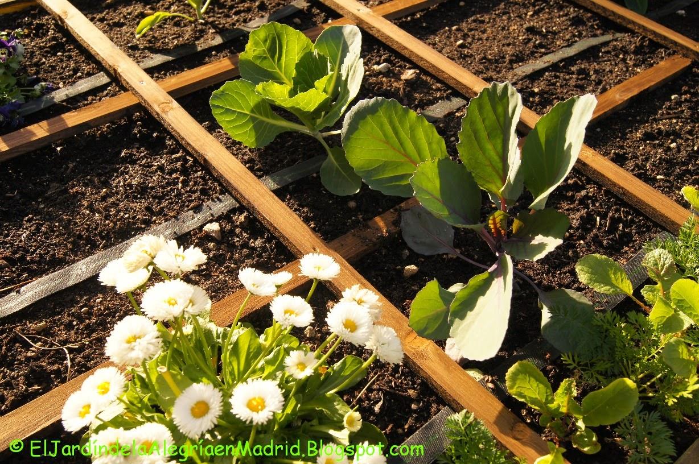 El jard n de la alegr a pensamientos entre hortalizas for Cancion el jardin de la alegria