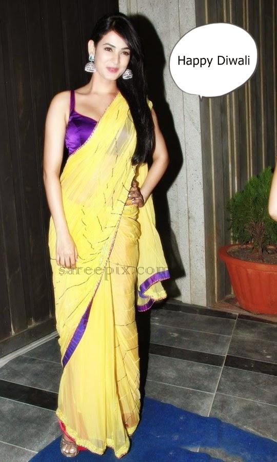 Sonal-chauhan-saree-Diwali-bash-2014