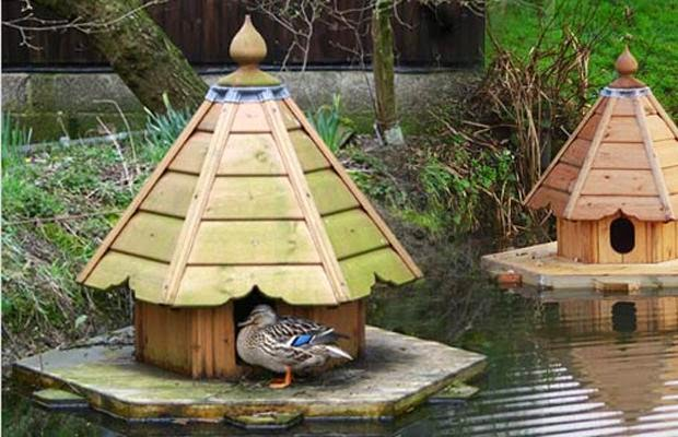 Plans to build a mallard bird house for Build your own duck house
