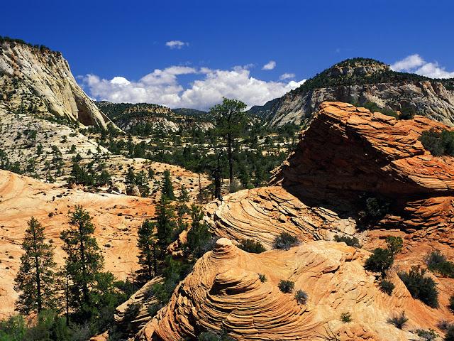Swirling sandstone formation, Zion National park Utah HD Wallpaper