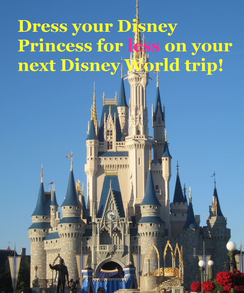 Through Walt Disney World