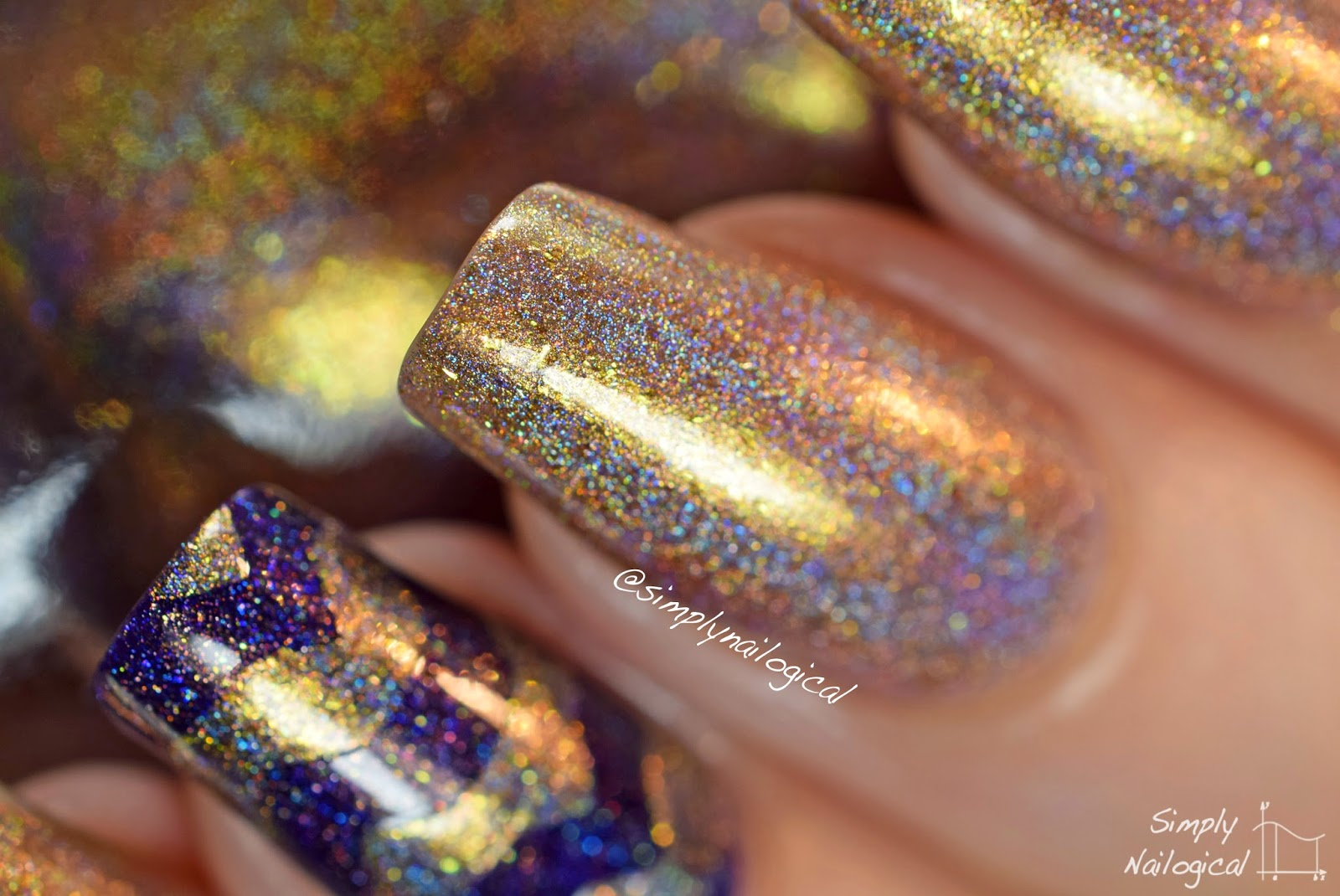 Iconic - ILNP Fall 2014 collection