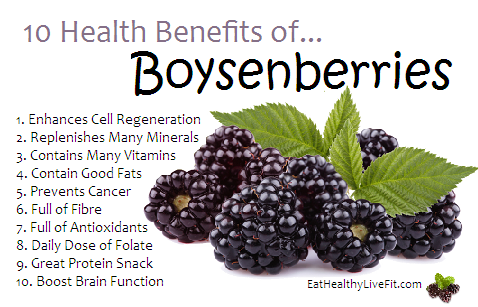 10 Health Benefits of Boysenberries