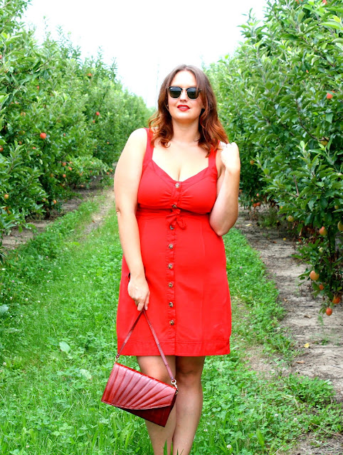 Red Banana Republic Dress at Tuttle Orchards
