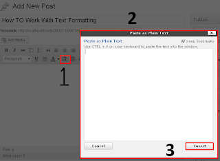 how to use past as plain text in WP