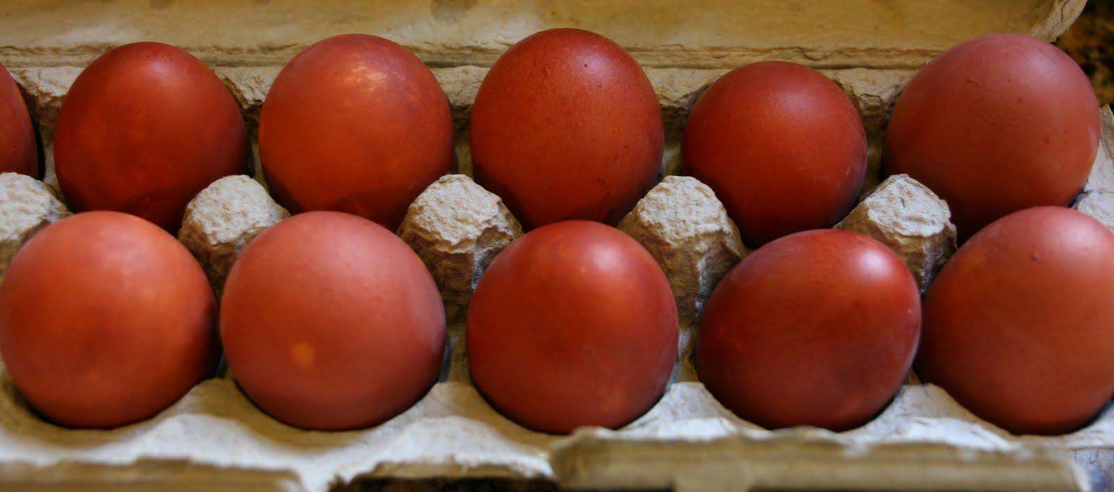 vignette design  natural dyed easter eggs