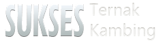 Budidaya Ternak Kambing - Fermentasi Jerami Pakan Kambing - Penggemukan Kambing