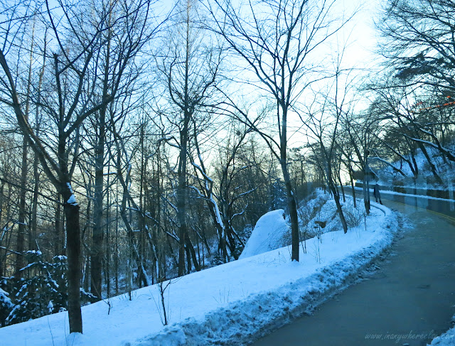 Winding road in Mt. Namsan